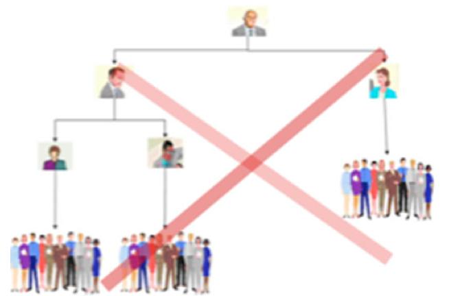 No hierarchy
