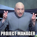 Project Manager – a Systemic View