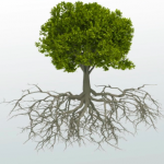 Complexity and Root Cause Analysis – Where Is the Fit?