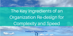 The Key Ingredients of an Organization re-design for Complexity and Speed